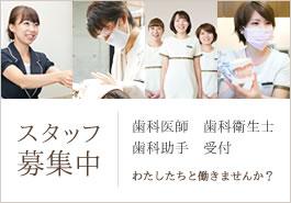 歯科医師、歯科衛生士、歯科助手の募集